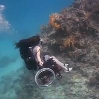 Плавающая инвалидная коляска